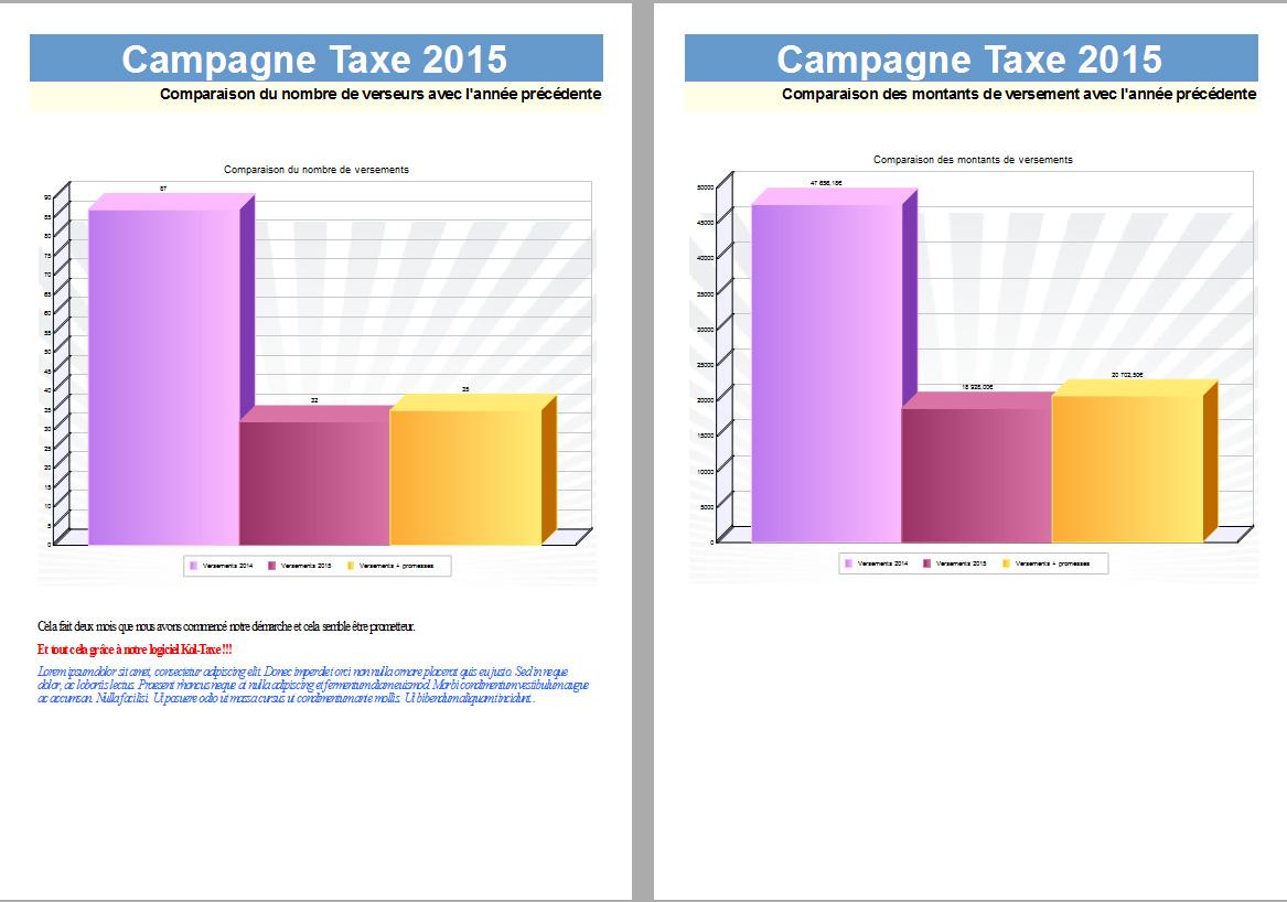 logiciel-taxe-d-apprentissage-apercu-rapport3